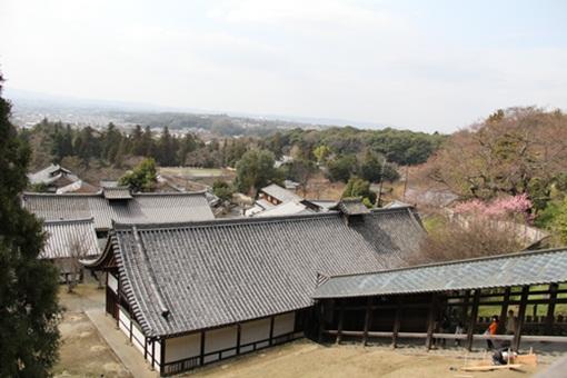 奈良公園3032410