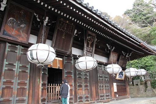 奈良公園303248