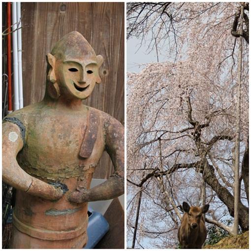 奈良公園303242