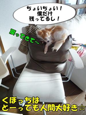 くぼP1150157