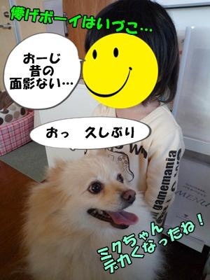 おーちゃんP1160295