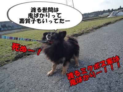 散歩拒否P1160065