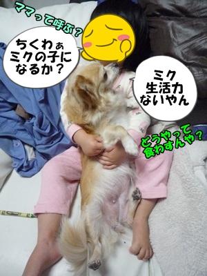 ちくわP1160576