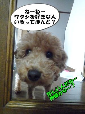 ジャイ子P1160639