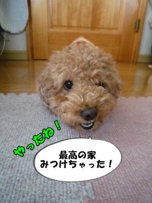 ナナちゃんP1170411