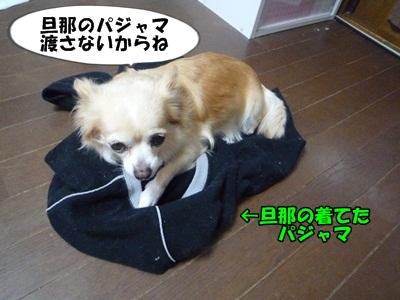 ちくわP1170438