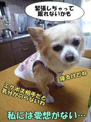 ちくわP1170766