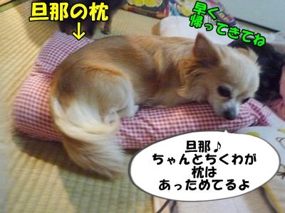 ちくわP1170626