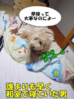 だぱんぷP1170847