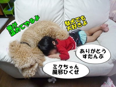 だぱんぷP1170816