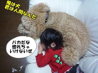 だぱんぷP1170817