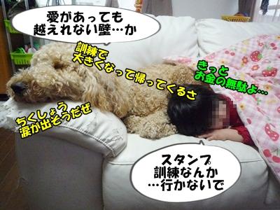 だぱんぷP1170818