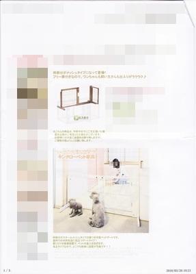 みんな幸せ凪1 (3)