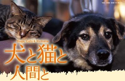 犬と猫と人間とtop_01