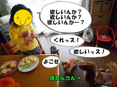 犬とおやつとミクとP1180108
