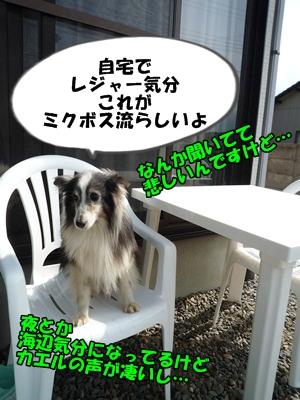 のんとデル男P1180360