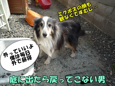 のんとデル男P1180341