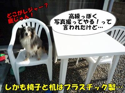 のんとデル男P1180359
