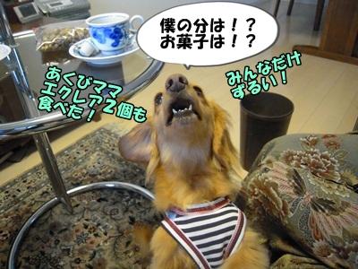 デル男DSCN9363