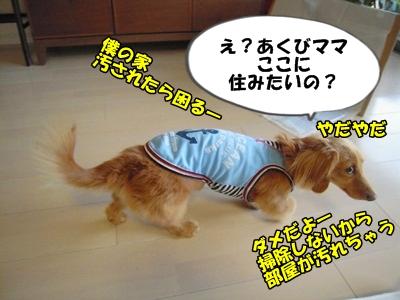 デル男DSCN9394