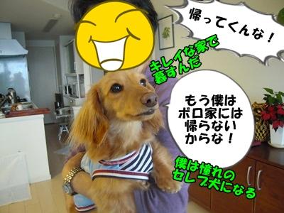 デル男DSCN9374
