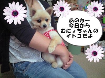 るるん♪CA3A0985