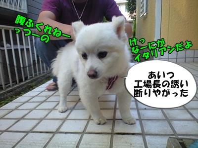 るるん♪CA3A1054