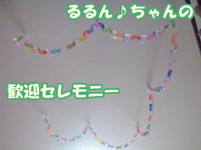 るるん♪CA3A1033