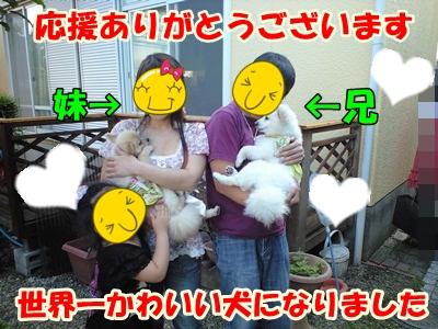 るるん♪CA3A1074