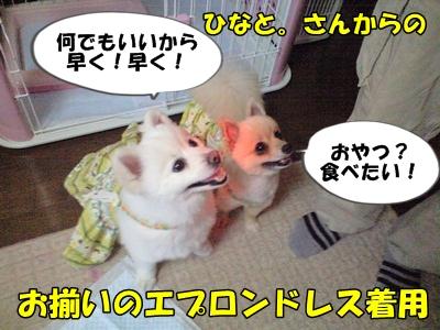るるん♪CA3A1059