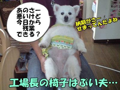 るるん♪CA3A1072
