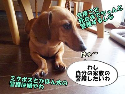 こげP1200834