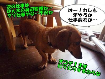 こげP1200831