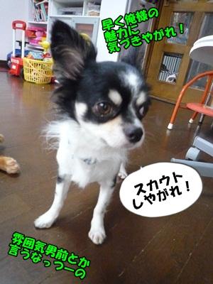松潤P1210068
