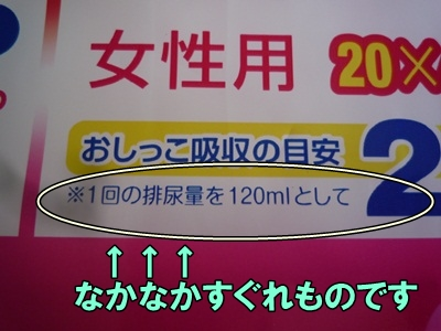 マナーベルトP1210653