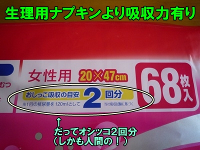 マナーベルトP1210652