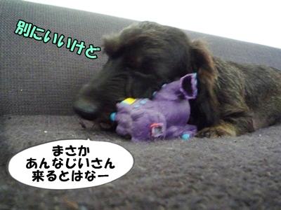 ちゃっぷP1210431