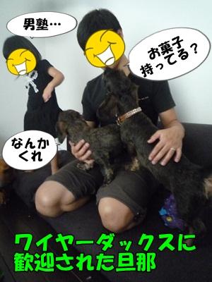 ちゃっぷP1210432