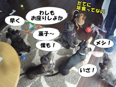 ちゃっぷP1210441