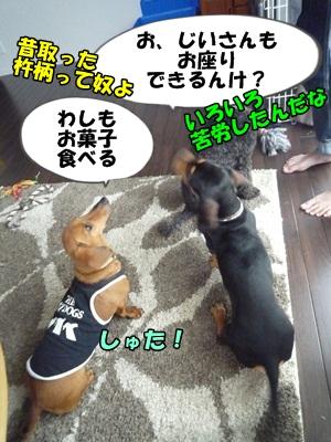 ちゃっぷP1210453