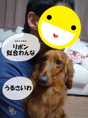 ちょっぱー1P1060357