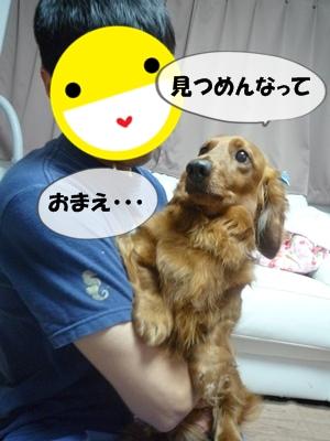 ちょっぱー1P1060356