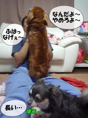 ちょっぱー1P1060374