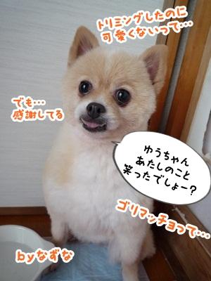 ゆうちゃんP1150946