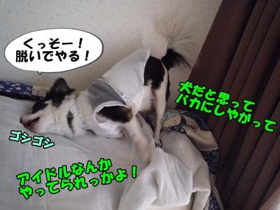松潤P1230310