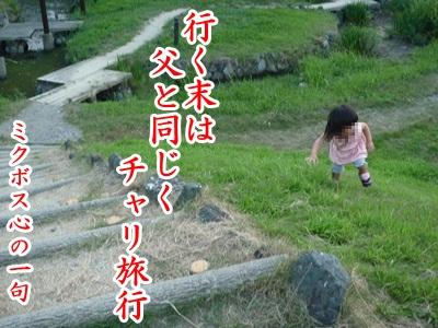 川柳P1220951