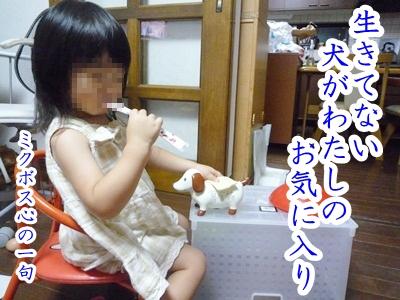 川柳P1210034