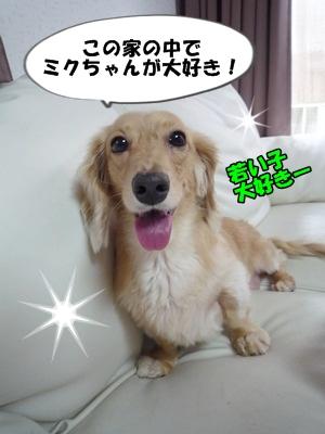 ぶーりんP1230574