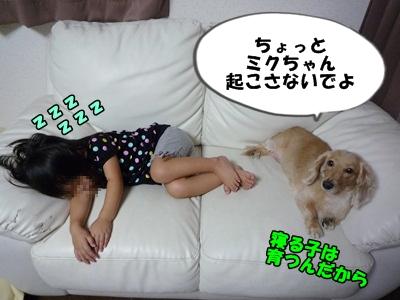 ぶーりんP1230497