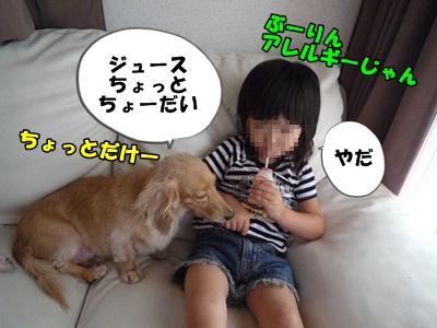 ぶーりん2007